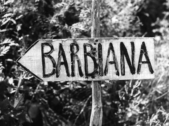 barbiana-cartello